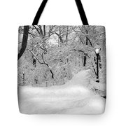 Central Park Dressed Up In White Tote Bag