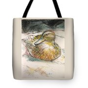 Central Park Duck On The Rocks Tote Bag