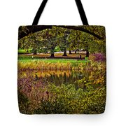 Central Park In Autumn - Nyc Tote Bag