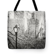 Central Park Lamppost In New York City Tote Bag