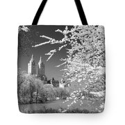 Central Park - Nyc Tote Bag