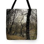Central Park Rainy Day Number Three Tote Bag
