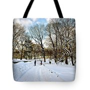 Central Park Snow Storm One Day Later2 Tote Bag