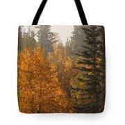 Central Park Yukon Tote Bag