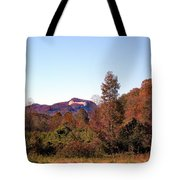 Cesars Head In The Fall Tote Bag