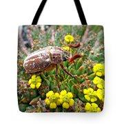 Chafer Beetle On Medusa Succulent Tote Bag