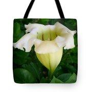 Chalice Vine Flower 9 Tote Bag