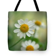 Chamomile Tote Bag by Kathy Yates