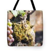Champagne Grapes Closeup Tote Bag