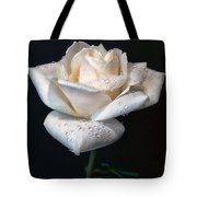 Champagne Rose Flower Macro Tote Bag