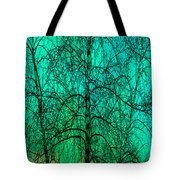 Change Of Seasons Tote Bag by Bob Orsillo