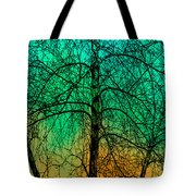 Change Of Seasons Number Tw0 Tote Bag