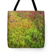 Changing Landscape I Tote Bag