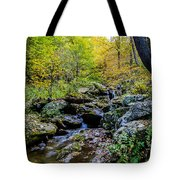 Changing Of The Season Tote Bag