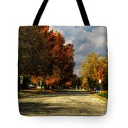 Changing To Fall Colors In Dwight Il Tote Bag