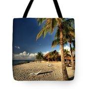 Chankanaab Beach Tote Bag