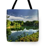 Chankanaab Lagoon Reflections Tote Bag
