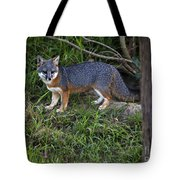 Channel Island Fox Tote Bag