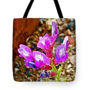 Chaparral Pea In Painted Desert Of Petrified Forest National Park-arizona  Tote Bag