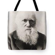Charles Darwin Tote Bag by English School