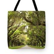 Charleston Avenue Of Oaks Tote Bag