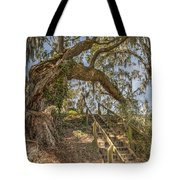 Charleston Oak Stairway Tote Bag