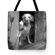 Charleston Shop Dog In Black And White Tote Bag