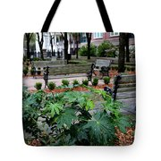 Charleston Waterfront Park Benches Tote Bag by Carol Groenen