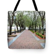 Charleston Waterfront Park Walkway Tote Bag
