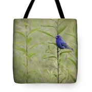 Charming Curiosity Tote Bag
