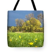 Charming View Tote Bag