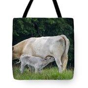 Charolais Cow Nursing Calf Tote Bag