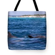 Chasing Dolphins  Tote Bag