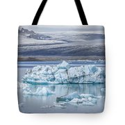 Chasing Ice Tote Bag