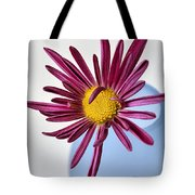 Chasing The Blues Away Tote Bag