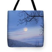 Chasing The Day Away Tote Bag
