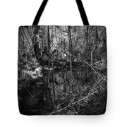 Chassahowitzka Number One Tote Bag
