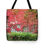 Chateau Chenonceau Vines On Wall Image One Tote Bag