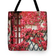 Chateau Chenonceau Vines On Wall Image Three Tote Bag