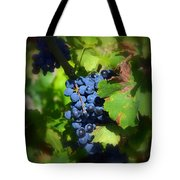 Chateauneuf Du Pape Hidden Treasure Tote Bag
