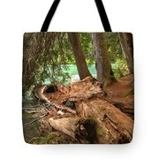 Cheakamus Lake Shoreline Tote Bag