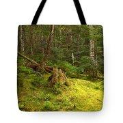Cheakamus Rainforest Floor Tote Bag