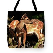 Checking The Back Trail Tote Bag