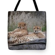 Chee-laxing Tote Bag