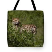 Cheetah   #0089 Tote Bag