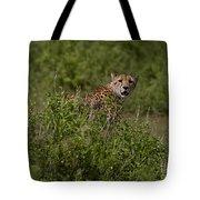 Cheetah   #0093 Tote Bag