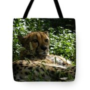 Cheetah 2 Tote Bag