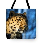 Cheetah Acinonyx Jubatus Tote Bag