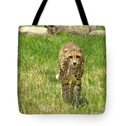 Cheetah Approaching Tote Bag