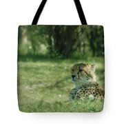 Cheetah At Attention Tote Bag